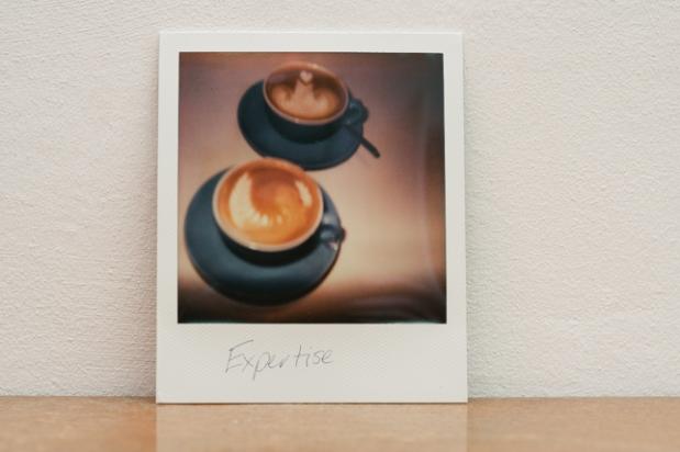 4-Polaroid-Expertise