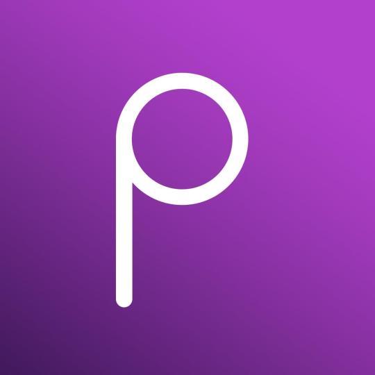 Priv logo