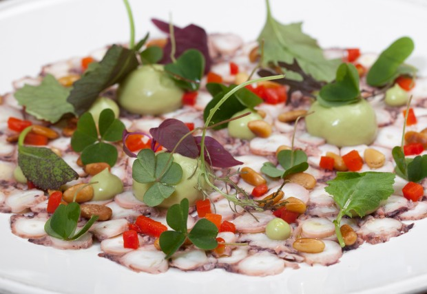 Sixtyone octopus carpaccio